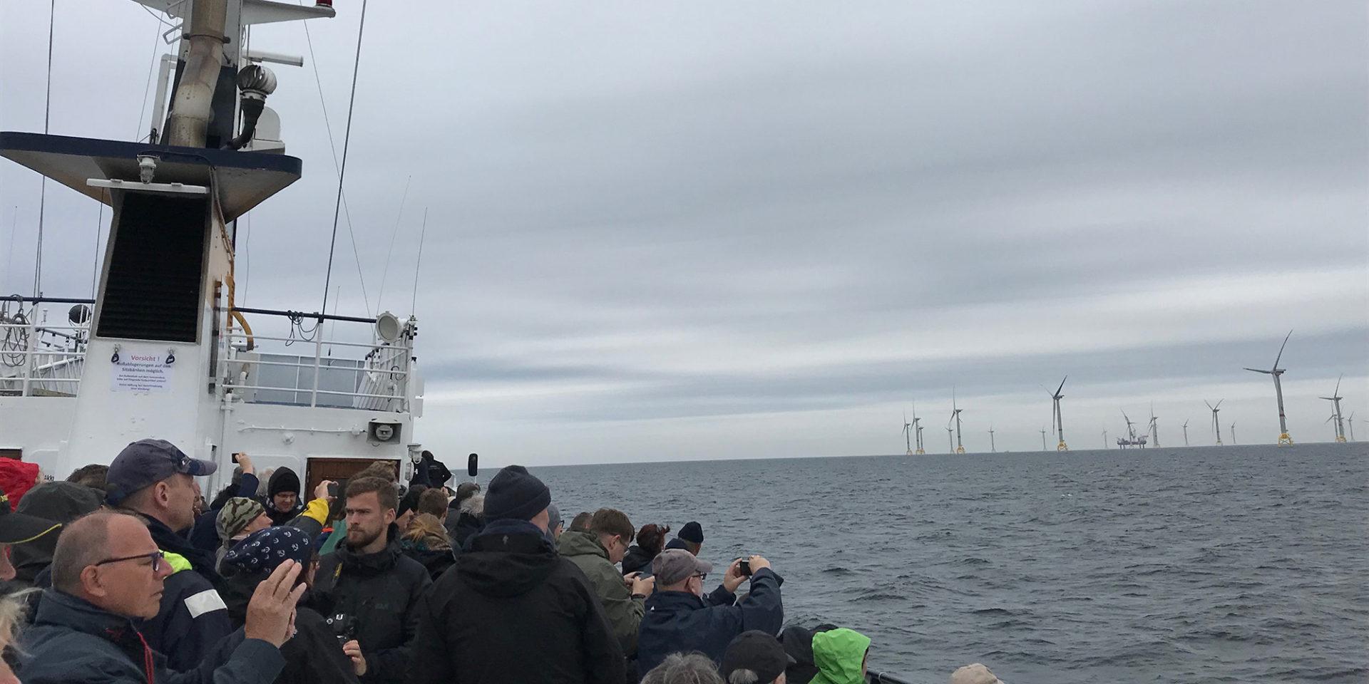 Menschen stehen auf einem Schiff, von dem aus sie einen Blick auf die Windräder in der Ostsee erhalten.